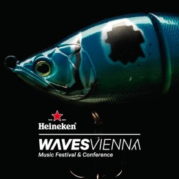 Go! Go! Gorillo hinterlassen Spuren beim Waves Festival in Wien