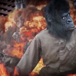 "Das neue Video ""King Kong Loves The Blonde One"" ist da!"
